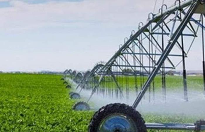 محافظ الوادي الجديد يعلن تخفيض 50% من قيمة شراء الأراضي الزراعية