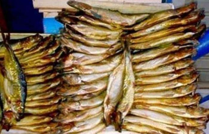 إعدام 1.5 طن رنجة فاسدة داخل ثلاجة في الإسكندرية