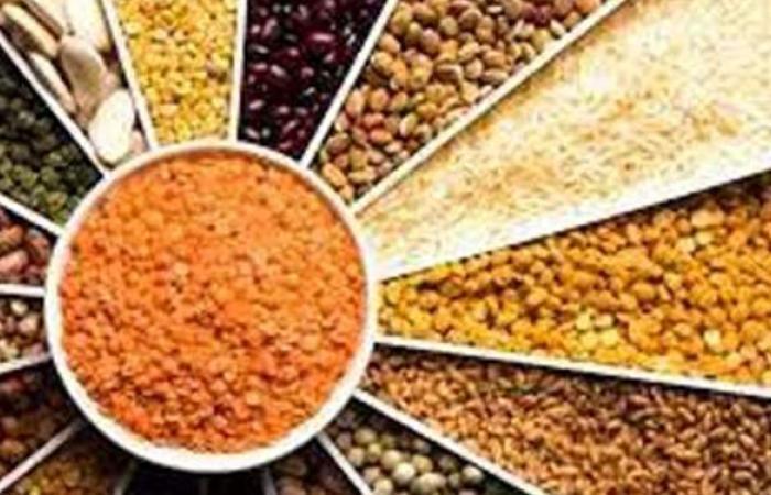 أسعار البقوليات اليوم الثلاثاء 4-5-2021 في الأسواق المصرية