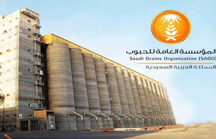 بالأسماء.. «مؤسسة الحبوب» تعلن قائمة الشركات الفائزة بمناقصة الشعير