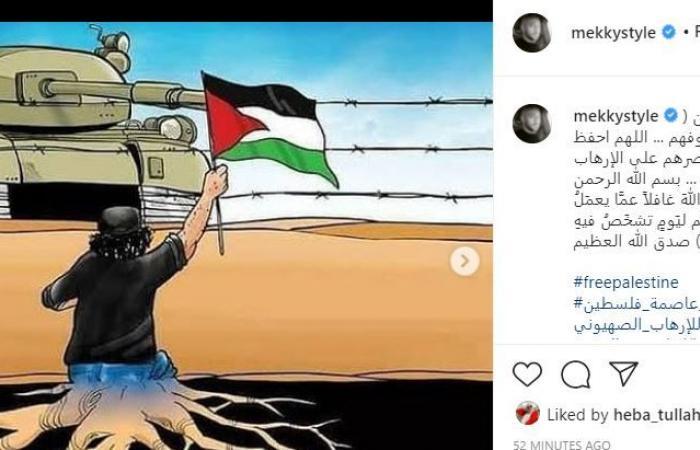 انقذوا حى الشيخ جراح.. هنيدى ومكى وإليسا يتضامنون مع فلسطين: سنرسل أصواتكم للعالم