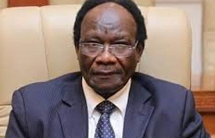 وزير الاستثمار السوداني: سنكون دائما سندًا للإخوة في مصر
