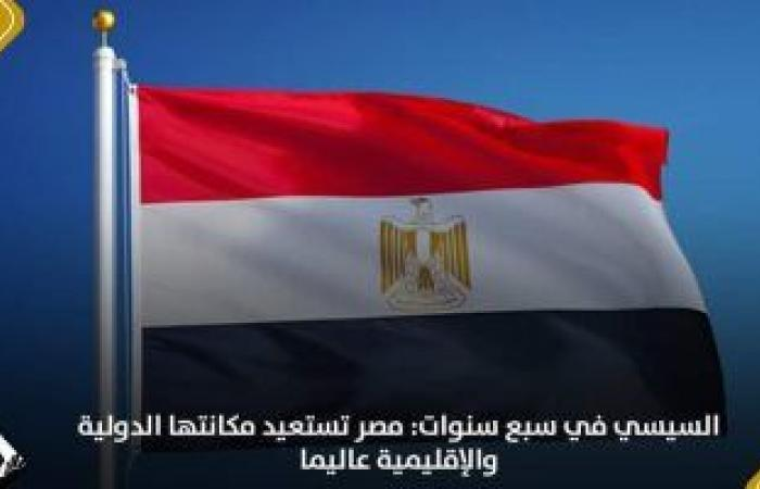 لجان التنسيقية النوعية ترصد أبرز إنجازات مصر فى ملف السياسة الخارجية