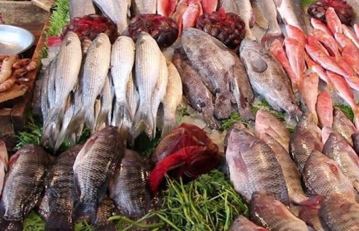 أسعار الأسماك اليوم الخميس 1-7-2021 في سوق العبور