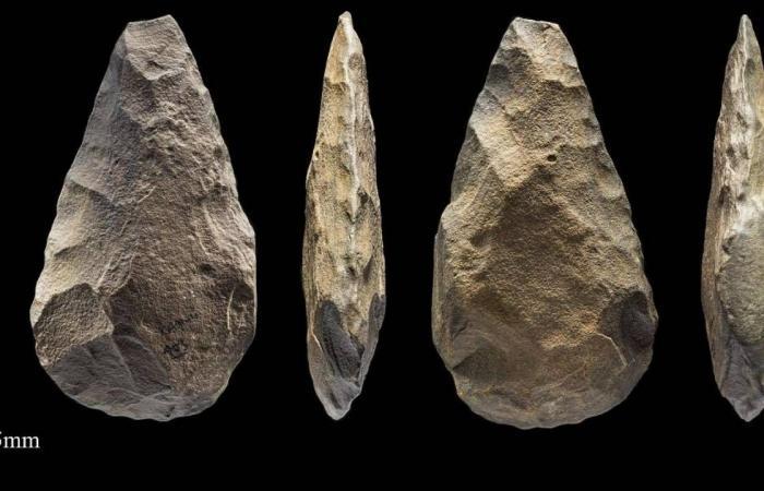 الاكتشافات الأثرية شمال المملكة.. دليل جديد لعمق تاريخ الجزيرة العربية وحضارتها الإنسانية