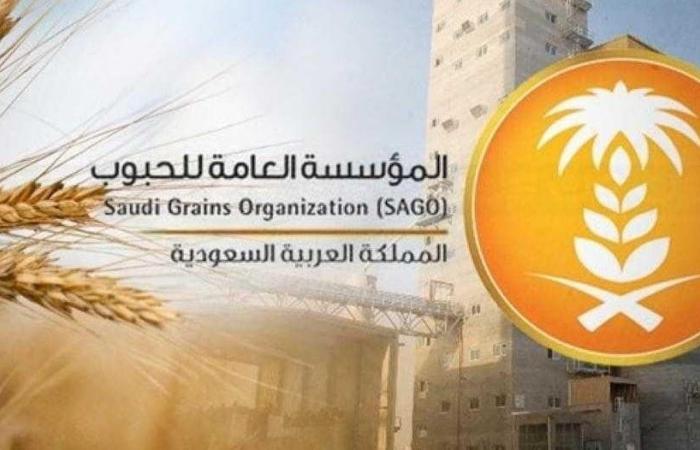 الحبوب تصرف مستحقات الدفعة الـ9 لمزارعي القمح