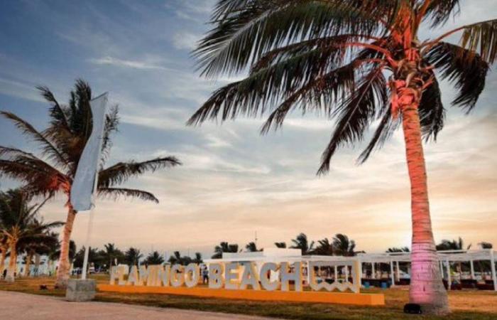 فعالية «شاطئ فلامينجو» تستقبل زوار ينبع بأنشطة وألعاب وعروضترفيهية