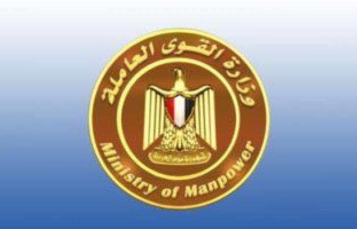 القوى العاملة تحرر 148 محضرا لمنشآت مخالفة بالإسكندرية