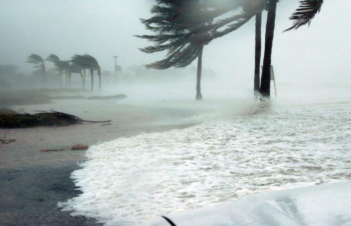 متحدث الأرصاد: «شاهين» يتحول إلى إعصار من الدرجة الأولى خلال الـ24 ساعة القادمة
