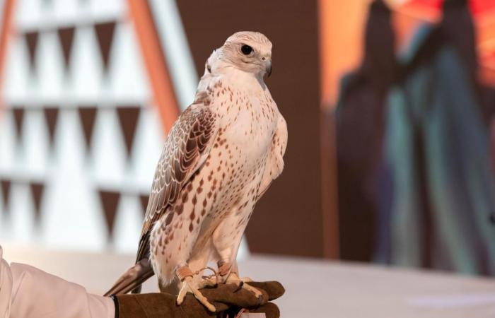 معرض الصقور والصيد السعودي الدولي الأكبر من نوعه في العالم ينطلق غدًا