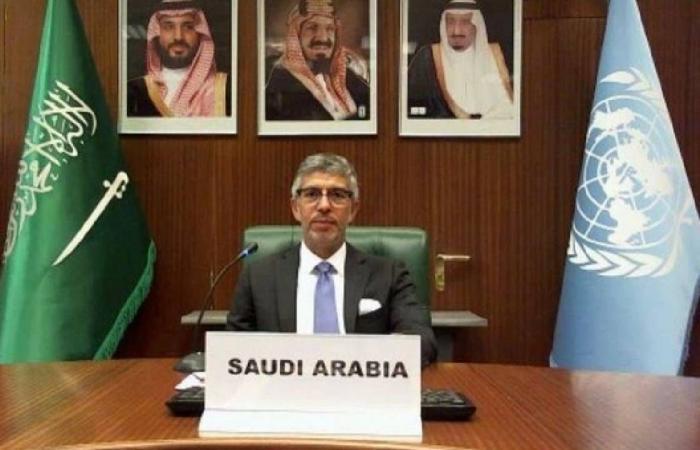 اجتماع مجموعة الـ77+ الصين.. السعودية: ندعم حق النفاذ للمعلومات بين الدول الأعضاء