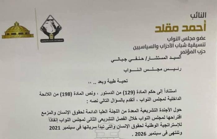 أحمد مقلد نائب التنسيقية يتقدم بسؤال لوزير الخارجية حول الأجندة التشريعية لحقوق الإنسان