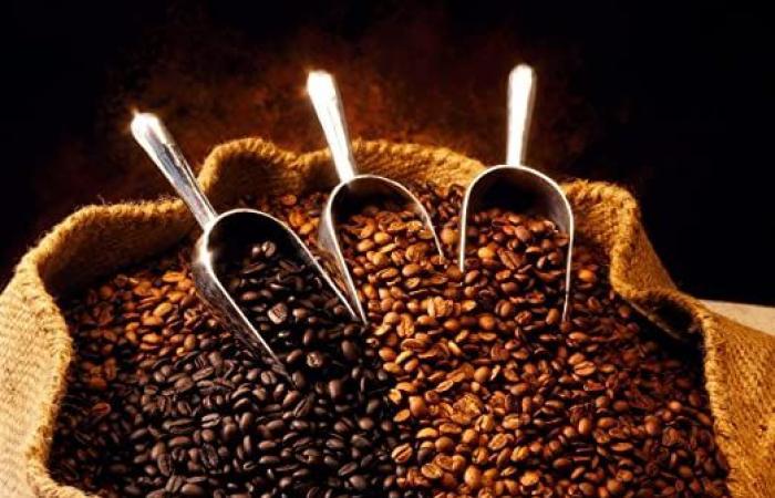 السعودية تحتفي باليوم العالمي للقهوة بتطوير قدراتها الإنتاجية من البن