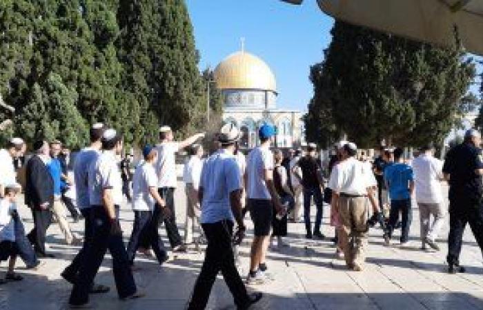 الخارجية الفلسطينية تطالب بموقف دولى حازم لوقف الاستيطان والتطهير العرقى