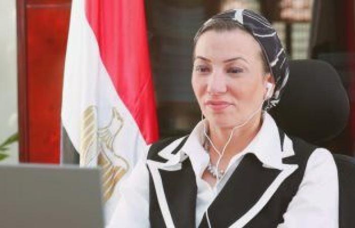وزيرة البيئة: إطلاق مشروع استثمارى بالغابات المتحجرة فى قلب القاهرة