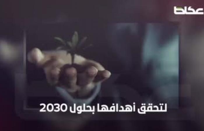 الاستراتيجية الوطنية للاستثمار.. مملكة الفرص