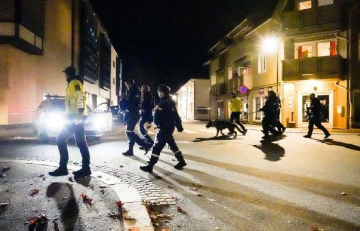عدد ضحايا المعتدي بالقوس والسهم في النرويج يرتفع إلى 5