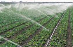 """زيادة إنتاجية المحصول أبرزها.. """"الزراعة"""" تبرز 11 فائدة لنظم الرى الحديث.. فيديو"""