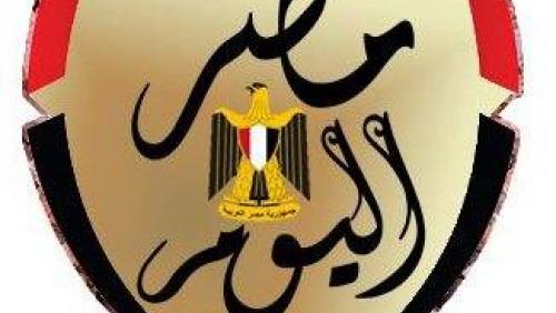 أبو حفيظة: مسلسل هيفاء وهبي هذا العام ثورة فى عالم المفاصل والإنزلاق الغضروفي - التليفزيون